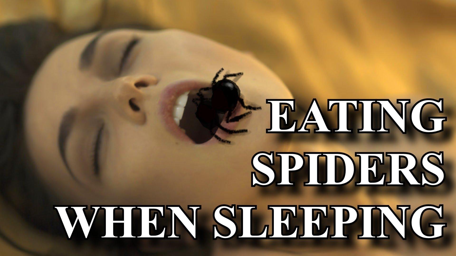 eatingbugs